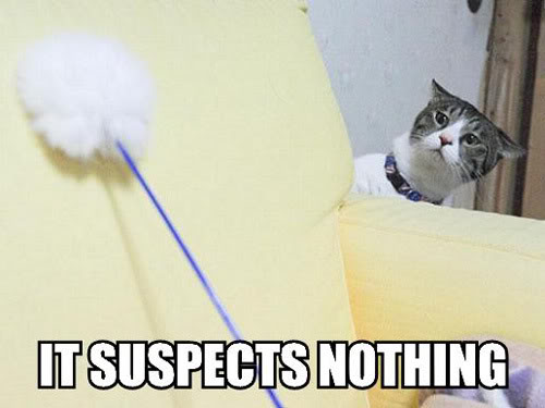 It suspects Nothing It suspects Nothing