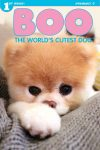 Boo : The World's Cutest Dog
