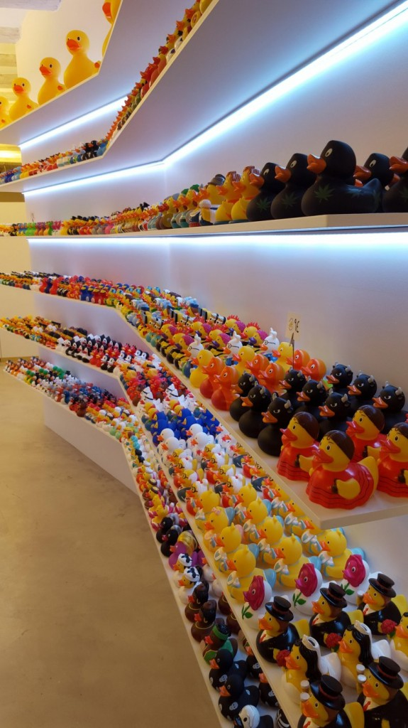 A massive Duck Collection