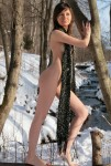 snow fence nudity (6)